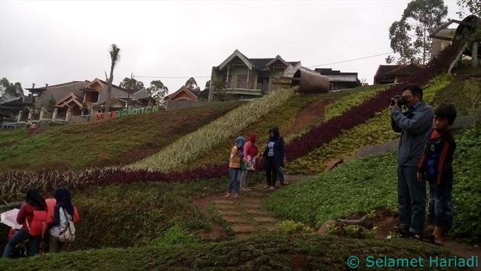 Rabbit Field (Taman Kelinci) di Malang (dok. pribadi)